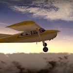 Ein Esel im XPlane10 – Cessna 185F Skywagon