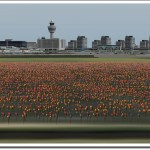 Tulpen für X-Plane: Amsterdam released