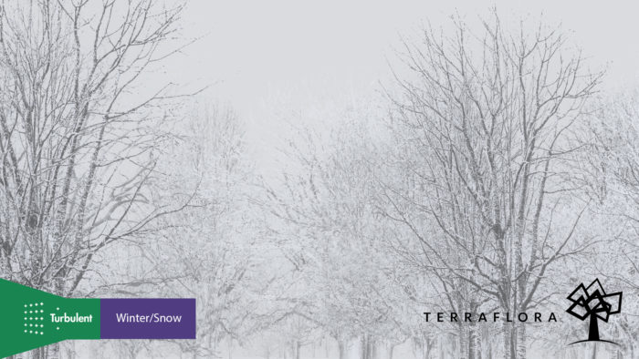 Terra Flora by Turbulent Designs